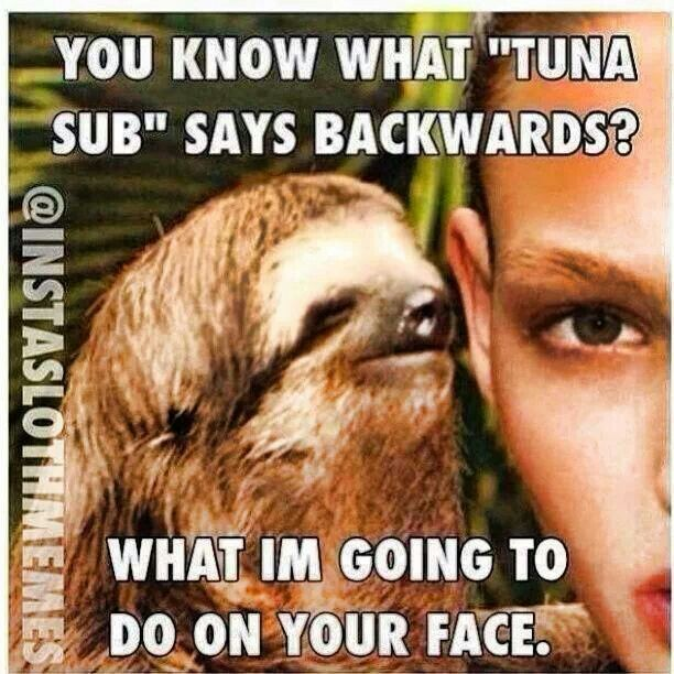Dirty sloth jokes meme - photo#20