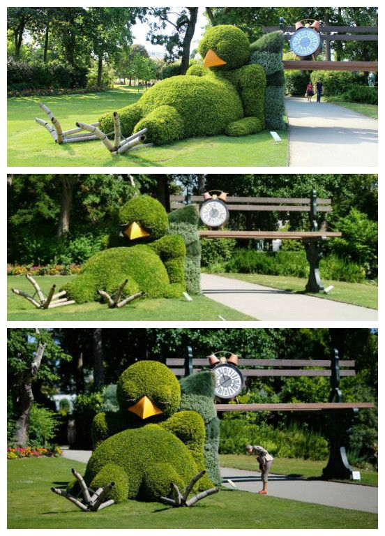 Sleepy chick hedge #Art, #Chick, #Fun, #Garden, #Hedge