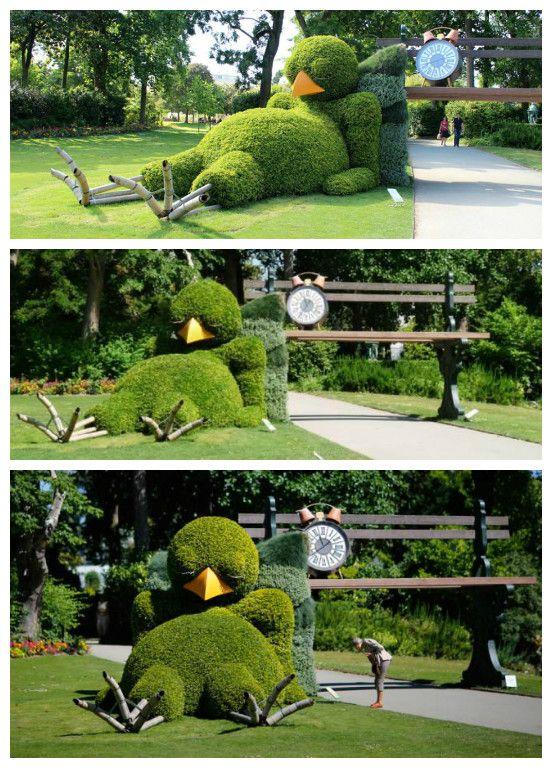 Sleepy chick hedge #Art, #Chick, #Fun, #Garden, #Hedge