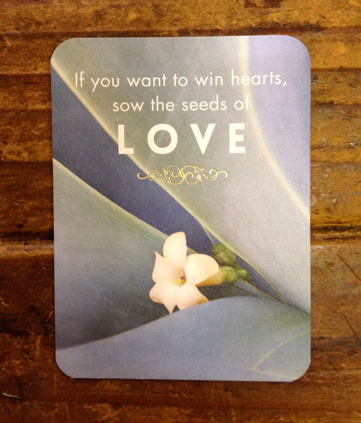 """""""If you want to win hearts, sow the seeds of love."""" - Rumi Affirmation card series."""