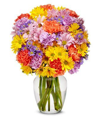 Fern  eshopclub Same Day Flower Delivery  Online Flower  Anniversary Flowers  Wedding Flowers Bouquets  Birthday Flowers  Send Flowers ** Details can be found by clicking on the image.