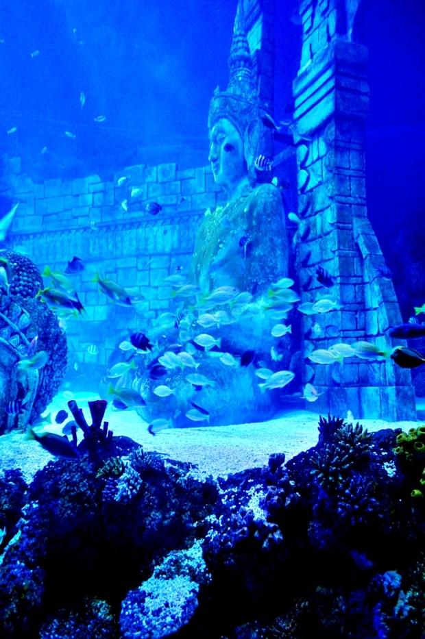 Sea Life Aquarium, Jesolo - Veneto, Italy