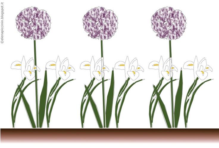 """Potreste scegliere una composizione alta e far spiccare le sfere violette dell'Allium """"Purple Sensation"""" sopra un mare candido di Iris """"White Wedgwood"""". (c) Elena Piccinin"""