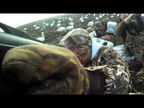 Our first in a two part look into snow goose hunting.