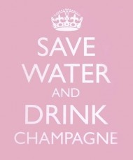 Save Water and Drink Champagne: Books Jackets, Quotes, Save Water, Drinkchampagn, Keepcalm, Life Mottos, Pink, Keep Calm, Drinks Champagne
