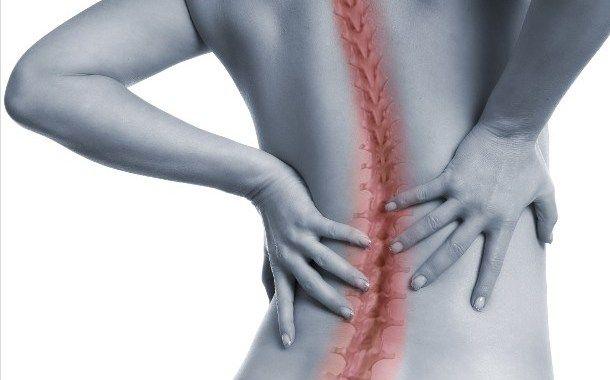 Wie die Wirbelsäule mit inneren Organen verbunden ist