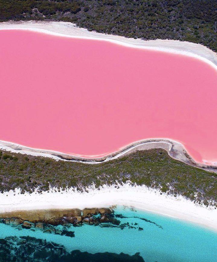 Best 25+ Lake Hillier Australia Ideas Only On Pinterest