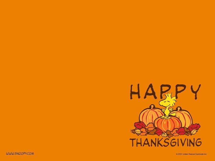 funny thanksgiving pictures and quotes Funny Thanksgiving