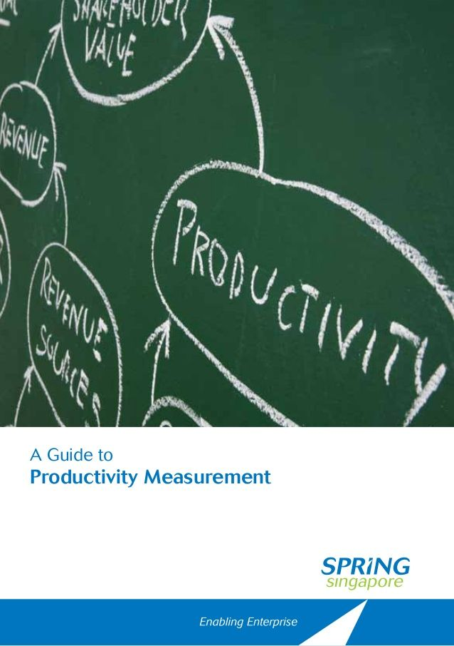 A Guide to Productivity Measurement