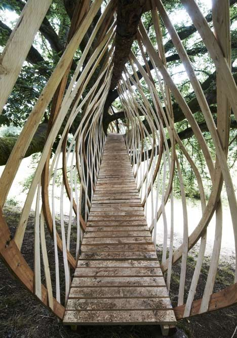 Walkway to treehouse inspired by bird's nest. Dartmoor Treehouse by Jerry Tate Architects