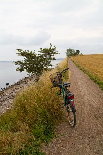 Cycling on the island of Ven, Skåne, Sweden this reminds me of stories my mom told me of riding her bike with her girlfriends in the late 1940s from Norway into Sweden.
