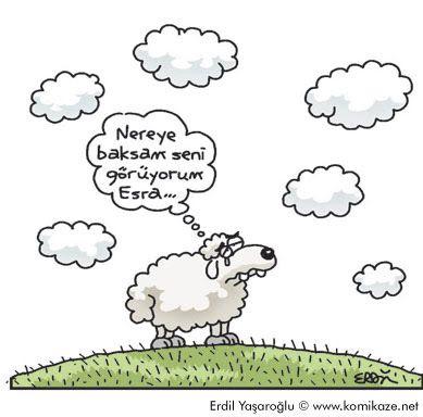 Komik Karikatürler: aşk karikatürleri