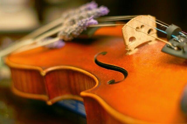 An Antique Violin since 1718