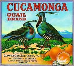 antique citrus label art - Google Search