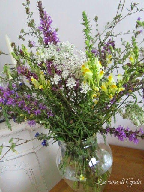 La casa di Gaia: fiori di campagna