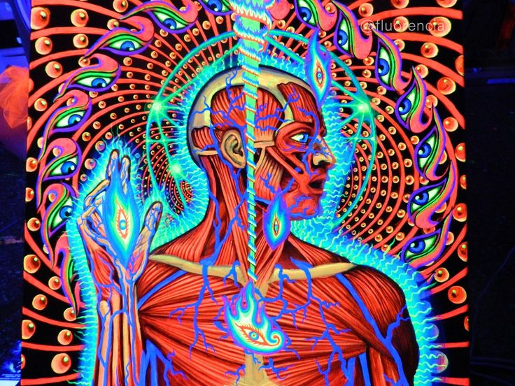 Psychedelic Spirit Paintings Alex Grey Art Gallery: 1000+ Images About Alex Grey On Pinterest