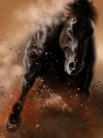 reining horses by Animal75Artist