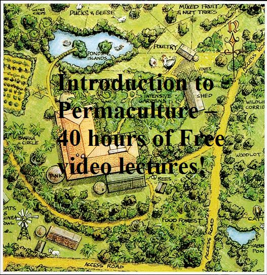 Introduction to Permaculture – 40 hours of Free video lectures!  DOWNLOAD ALL LECTURES FOR FREE HERE: http://www.permaculture-media-download.com/2011/09/introduction-to-permaculture-40-hours.html