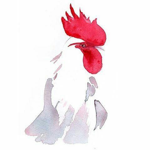 Happy Chinese New Year from @sylviabaldevaillustration #happynewyear #rooster #illustration #chinesenewyear #creativepeople #creativedirector #picoftheday #cansonpaper #instagood  #instapics #chinese #smallbiz #mycreativebiz #makersgonnamake #creativelifehappylife #handsandustle #tnchustler #creativeentrepeneur #girlboss #brandchat #creativepreneur #socialbusiness #designer #cny #cny2017
