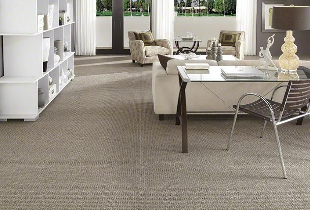 Carpet Carpeting Berber Texture More New Home Designs Pretty House Home