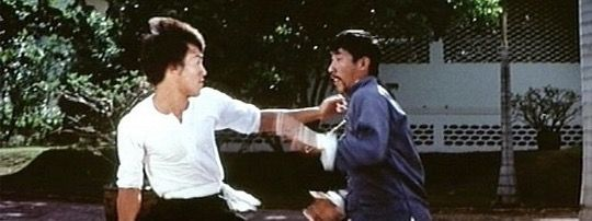 bruce lee thesis statement Bruce lee chuck norris bruce lee master bruce lee martial arts bruce lee body bruce lee movies bruce lee photos thesis statement martial artist kung fu forward this should be a poster on every kids wall.