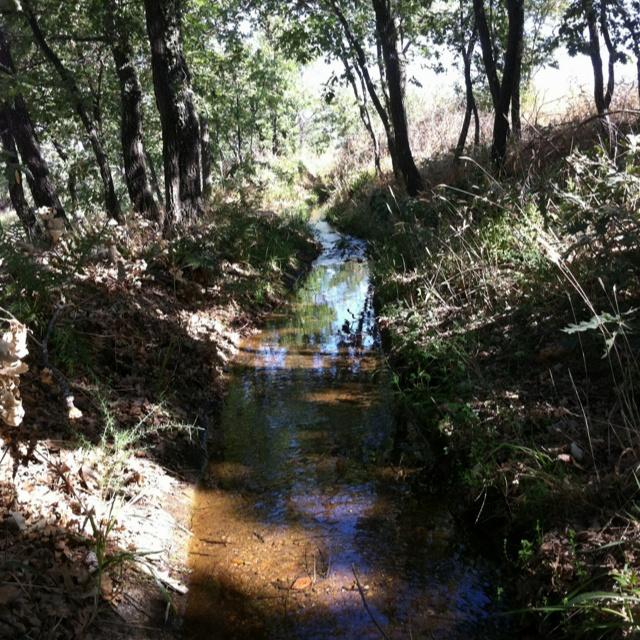 Hace calor, todo está seco, sólo arbustos y rastrojos, los pies; unos pesados tarugos de madera. La solución: el regato: agua limpia y fresca a la sombra donde meter los pies y manos.