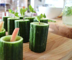 Cucumber Mint Cooler in Edible Cucumber Cups