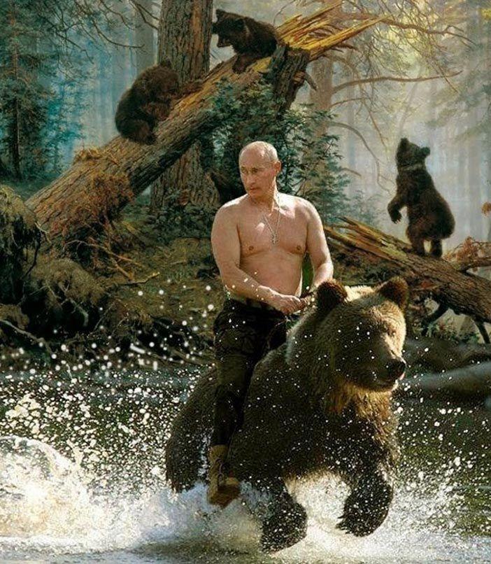 Vladimir Putin rides mother Kodiak brown bear in the ...