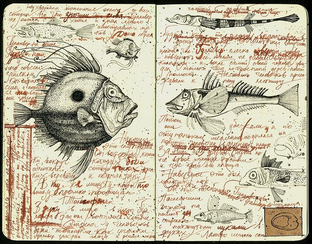 Fishes | Flickr