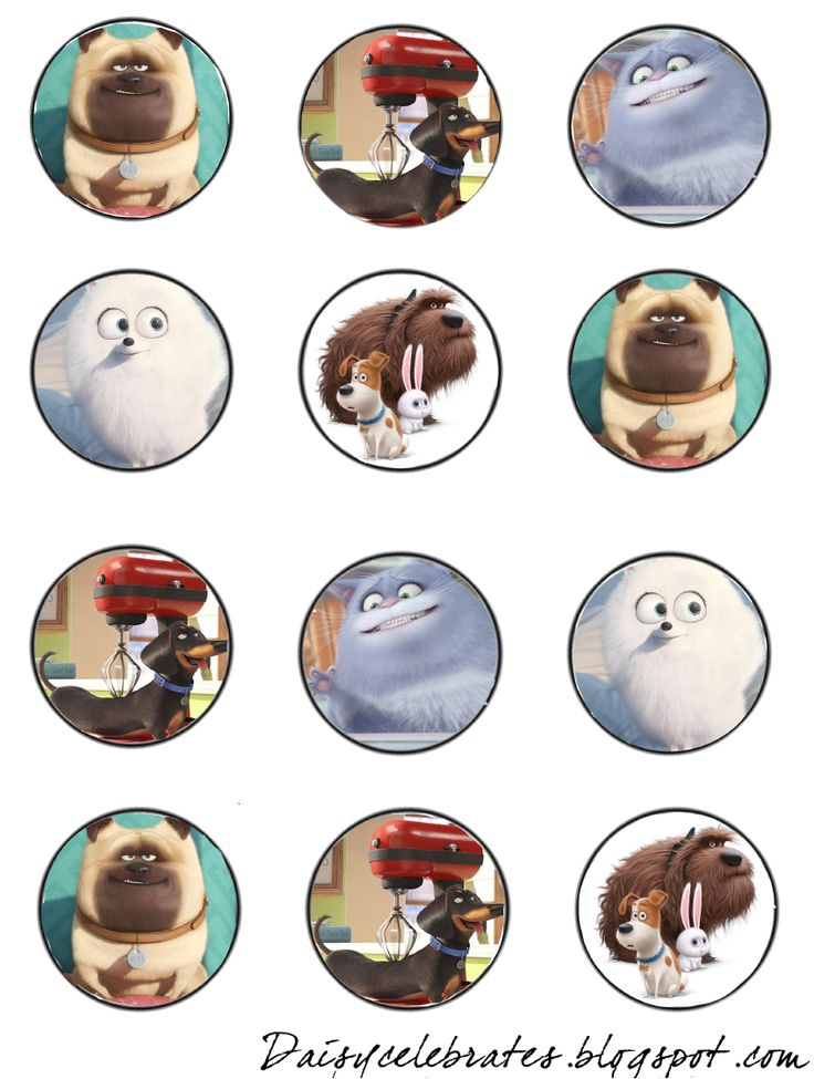 This is a picture of Impeccable Secret Life of Pets Printables