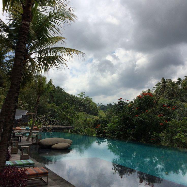 Jungle Fish Restaurant in Ubud