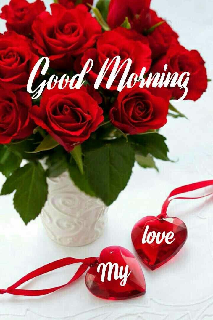 Good Morning For Love Good Morning Beautiful Flowers Good Morning Love Good Morning My Love