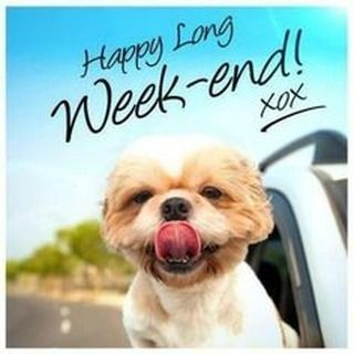 Happy LONG Weekend! What are your plans? #longweekend #diyvideomarketing