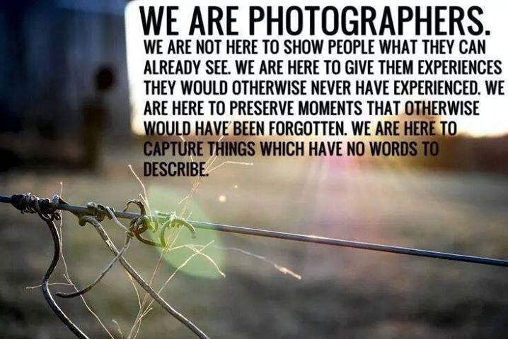 17 Best Images About Quotes On Pinterest: 17 Best Images About Nature & Photography Quotes On