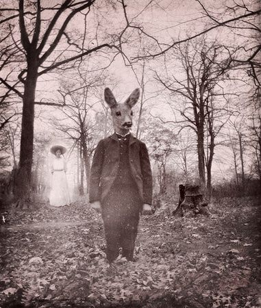 giant rabbit and spirit photography - this pic's got it all can't get enough