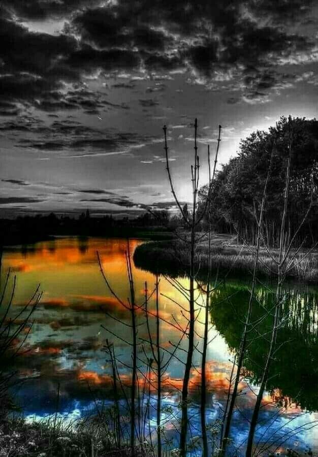 Pin By Natasa Tanasha On Nature Splash Photography Color Splash Photo Color Splash Photography