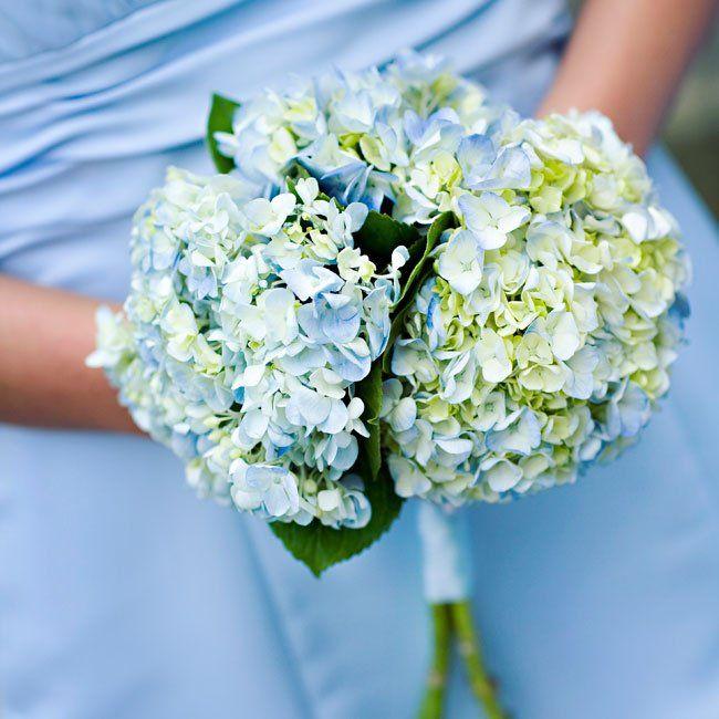 The 25 Best Blue Hydrangea Bouquet Ideas On Pinterest