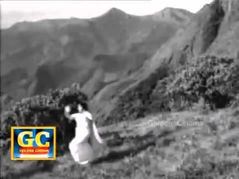Myke ⁓ Top Ten Neela Vanam Old Tamil Movie Mp3 Songs Free