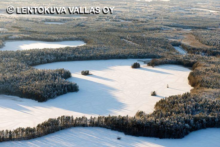 Talvinen maisema, Liesjärven kansallispuisto Ilmakuva: Lentokuva Vallas Oy