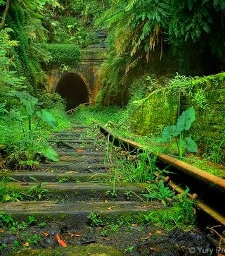 The abandoned Helensburgh railroad tunnel in Australia. It was opened in 1889 and abandoned in 1915.