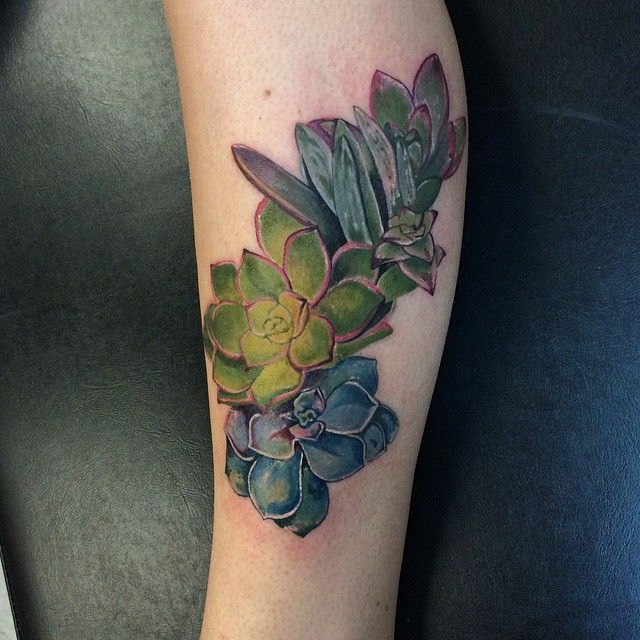 Cactus by Dia Moeller at Boston Tattoo Company, Boston MA