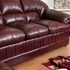 How to clean a leather sofa (includes ink stains, grease, urine)