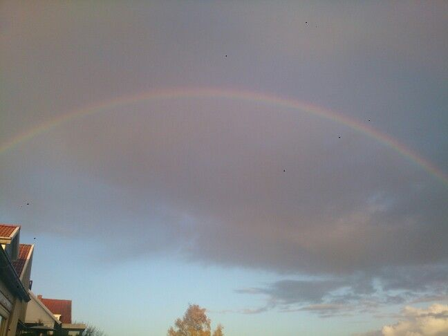 #regnbue