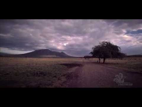 Taman Nasional Baluran | Colouring Indonesia