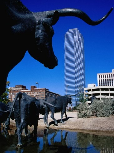 Visit the longhorns...well, the bronze version... at Pioneer Plaza. Between the Aloft Hotel and the convention center.  #CAMEXShow 2014