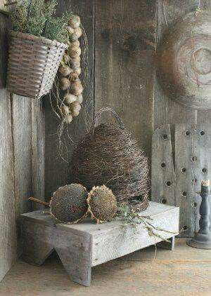 The gourds, beach and dried sunflowers.