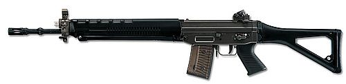 Swiss Arms: SG 550 Find our speedloader now!  http://www.amazon.com/shops/raeind