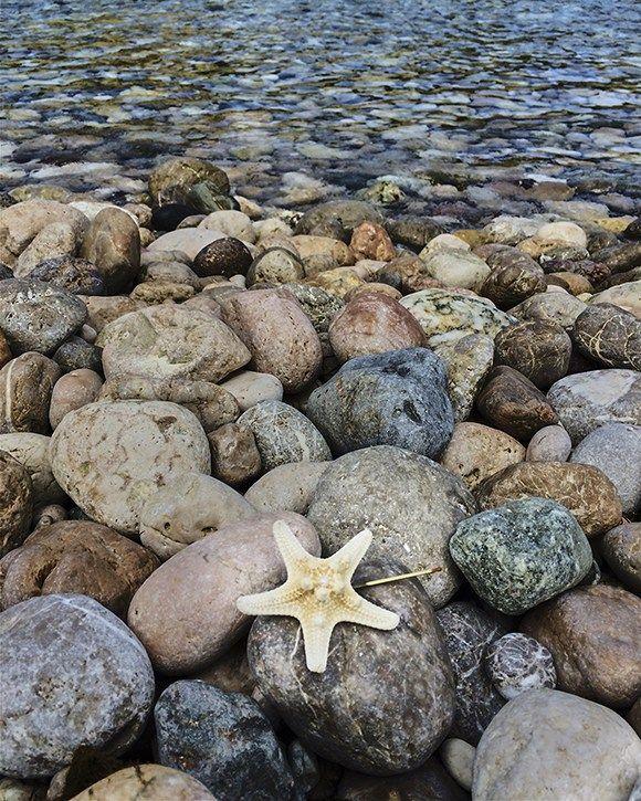 Grampo de estrela do mar na praia siciliana de Mazzarò! Um acessório que parecia ter sido feito lá!