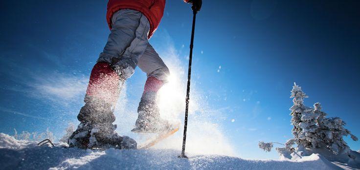 Adaptamos nuestro calendario a la época de frío y a las primeras nevadas con interesantes cursos y excursiones con raquetas de nieve.