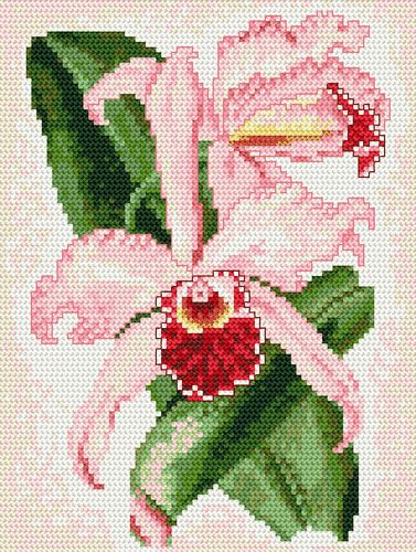 humming birds cross stitch - Google Search